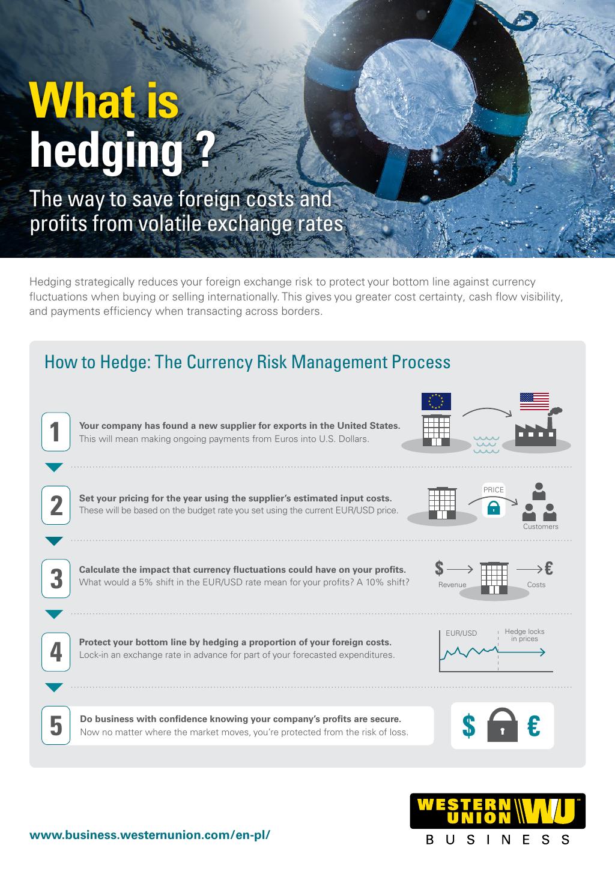 What Is Hedging Flyer [EN-PL]