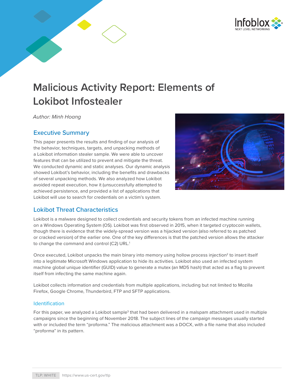 Malicious Activity Report: Elements of Lokibot Infostealer